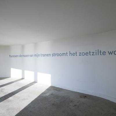 Carolina Koster – Portfolio – dichtregel op muur